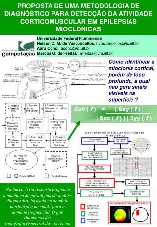 Universidade Federal Fluminense Nelson C. M. de Vasconcellos , nvasconcellos@ic.uff.br