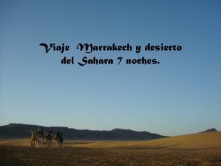 Viaje a Marruecos 1 Semana