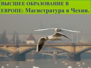 ВЫСШЕЕ ОБРАЗОВАНИЕ В ЕВРОПЕ:  Магистратура в Чехии.