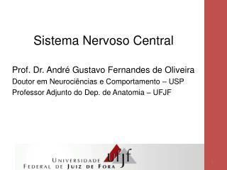 Sistema Nervoso Central Prof. Dr. André Gustavo Fernandes de Oliveira