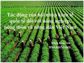 T ác  động  của hội nhập kinh tế quốc tế đối với nông nghiệp ,  nông thôn và nông dân Việt  Nam