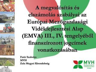 Fatér Szabolcs MVH  Zala Megyei Kirendeltség