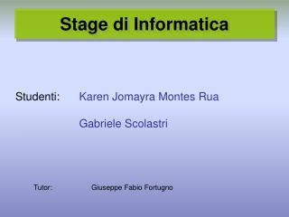 Stage di Informatica
