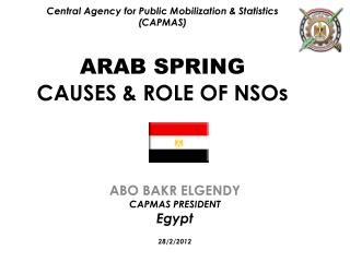 Central Agency for Public Mobilization  Statistics CAPMAS  ARAB SPRING CAUSES  ROLE OF NSOs