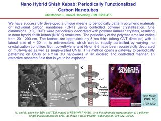 Nano Hybrid Shish Kebab: Periodically Functionalized  Carbon Nanotubes Christopher Li, Drexel University, DMR-0239415