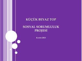 KÜÇÜK BEYAZ TOP SOSYAL  SORUMLULUK  PROJESİ Kasım 2013