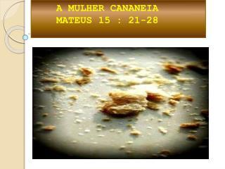 A MULHER CANANEIA  MATEUS 15 : 21-28