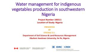 Water management for indigenous vegetables production in southwestern Nigeria