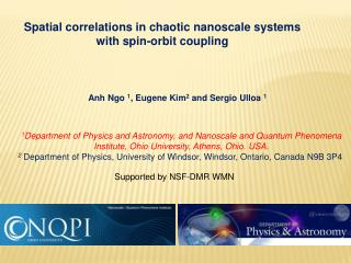 Spatial correlations in chaotic  nanoscale  systems with spin-orbit coupling