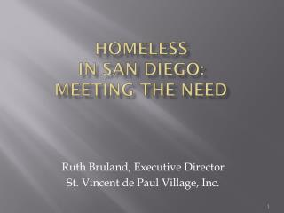 Homeless  in San Diego:  meeting the need