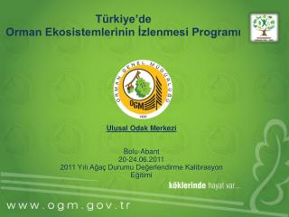 Türkiye'de  Orman Ekosistemlerinin İzlenmesi Programı