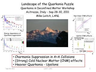Landscape of the Quarkonia Puzzle Quarkonia in  Deconfined  Matter Workshop