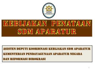Asisten  deputi koordinasi kebijakan sdm aparatur Kementerian  P ENDAYAGUNAAN APARATUR NEGARA