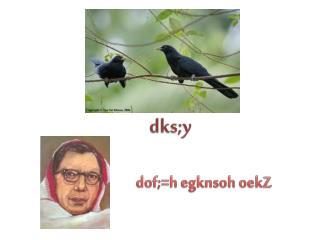 dks;y