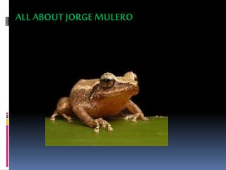 ALL ABOUT JORGE MULERO