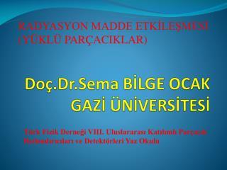 Doç.Dr.Sema BİLGE OCAK GAZİ ÜNİVERSİTESİ