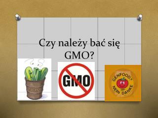 Czy należy bać się GMO?