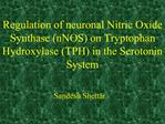 Regulation of neuronal Nitric Oxide Synthase nNOS on Tryptophan Hydroxylase TPH in the Serotonin System