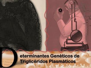 eterminantes Genéticos de                                                Triglicéridos Plasmáticos