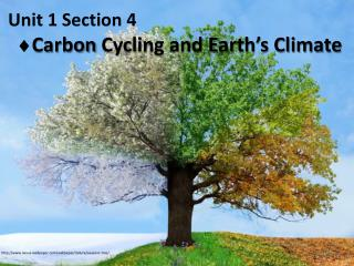 Unit 1 Section 4    Carbon  Cycling and Earth's Climate