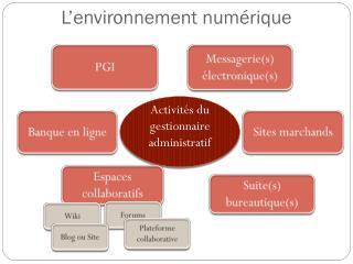 L'environnement numérique