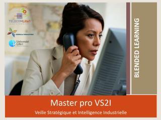 Master pro VS2I Veille Stratégique et Intelligence Industrielle
