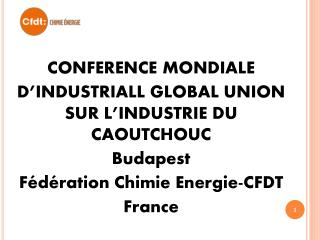 CONFERENCE MONDIALE D'INDUSTRIALL GLOBAL UNION SUR L'INDUSTRIE DU CAOUTCHOUC Budapest