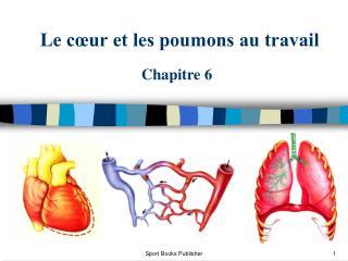 Le cœur et les poumons au travail