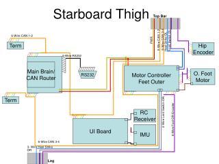 Starboard Thigh
