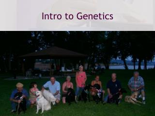 Intro to Genetics