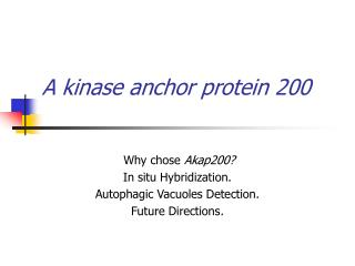 A kinase anchor protein 200