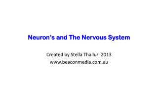 Neuron's and The Nervous System