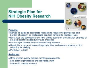 Strategic Plan for  NIH Obesity Research