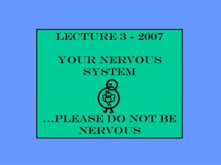 Lecture 3 - 2007 YOUR NERVOUS SYSTEM …please do not be nervous