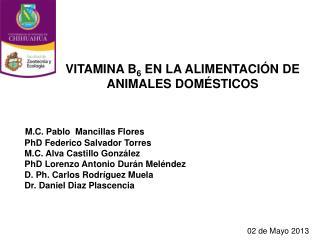M.C. Pablo  Mancillas Flores  PhD Federico Salvador Torres  M.C. Alva Castillo González