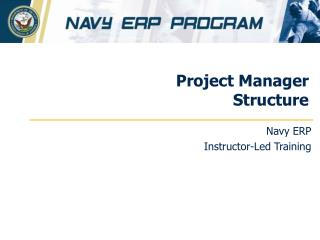 Project Manager Structure