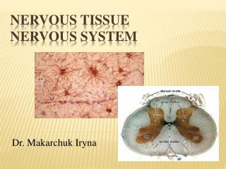 Nervous tissue Nervous system
