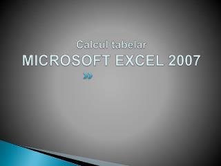 Calcul tabelar MICROSOFT EXCEL 2007