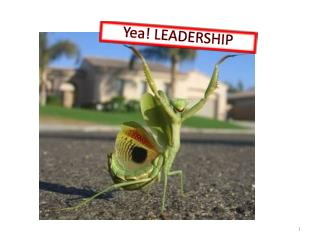 Yea! LEADERSHIP