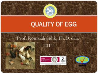 QUALITY OF EGG