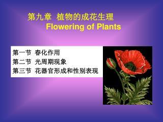 第一节  春化作用  第二节  光周期现象  第三节  花器官形成和性别表现