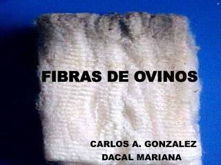 FIBRAS DE OVINOS