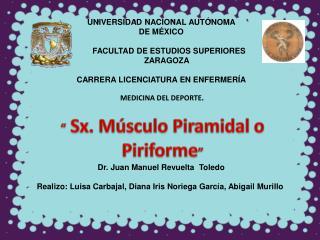 """"""" Sx. Músculo  Piramidal o Piriforme """""""