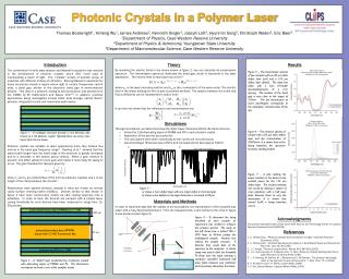 Photonic Crystals in a Polymer Laser