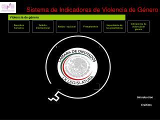 Sistema de Indicadores de Violencia de Género