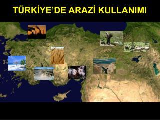 TÜRKİYE'DE ARAZİ KULLANIMI