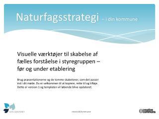 Naturfagsstrategi  – i din  kommune