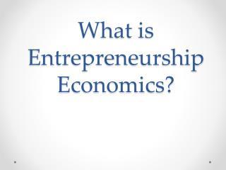 What is  Entrepreneurship  Economics?
