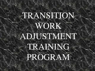 TRANSITION WORK ADJUSTMENT TRAINING PROGRAM