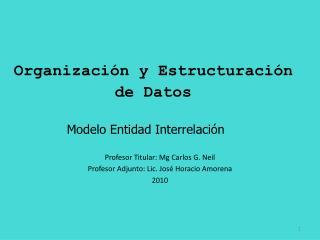 Organización y Estructuración de Datos